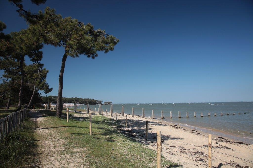 Islands yeu island and noirmoutier island camping - Camping bois de la chaise noirmoutier ...